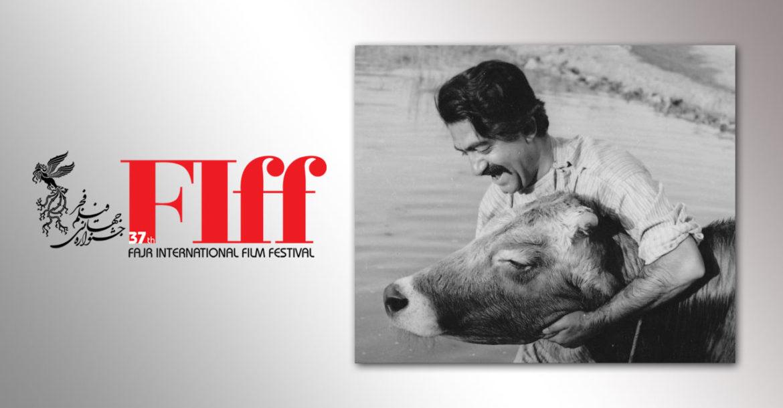 نمایش فیلم دیده نشده از پشتصحنه و تست بازیگری فیلم «گاو» در جشنواره جهانی فیلم فجر