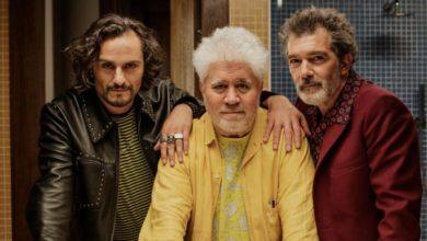 فیلم جدید پدرو آلمودوار در صدر جدول برگزیدگان منتقدین جشنواره کن 2019