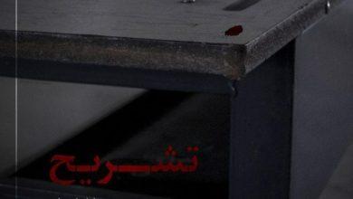 """سیاوش شهابی کارگردان فیلم کوتاه """"تشریح"""" از جشنواره فجر انصراف داد"""
