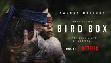 """نگاهی به فیلم """"آشیانه پرنده """"با بازی ساندرا بولاک"""